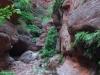 saddle-canyon-hike