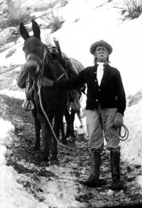 John Hance Grand Canyon Mule